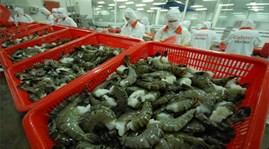 Sẽ lập sàn đấu giá thủy sản Việt Nam tại Bỉ