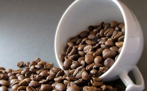 Giá cà phê tăng mạnh do hạn hán ở Brazil đã làm thiệt hại cây trồng