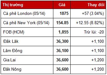Giá cà phê trong nước ngày 19/2/2014