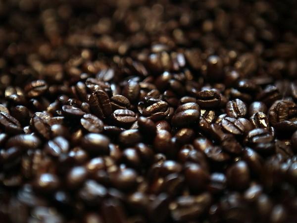 Thị trường cà phê đang bị chi phối bởi yếu tố thời tiết GIA CA PHE ngày 18/2/2014