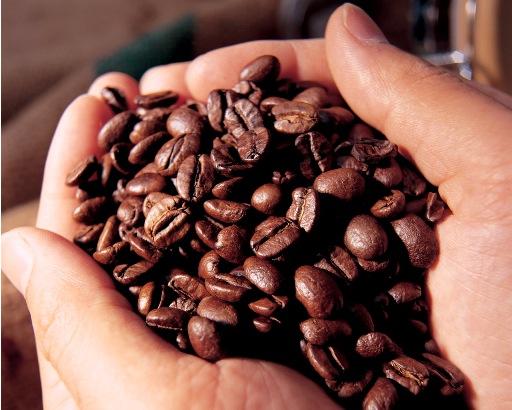 Giá cà phê Arabica phục hồi từ mức thấp nhất trong hơn 5 tháng qua