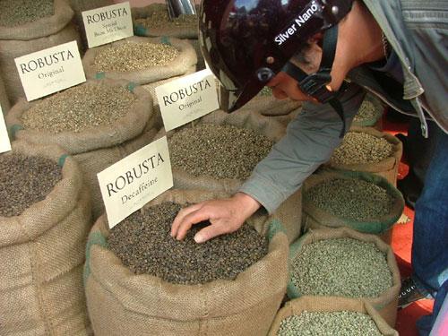Cà phê Việt Nam giá giảm, xuất khẩu tháng 10 tăng vọt