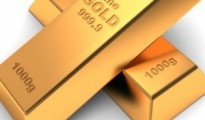 gold13-300x336