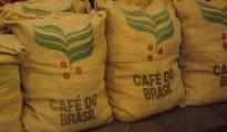 Sản lượng cà phê Brazil năm 2014 chỉ đạt 40 triệu bao