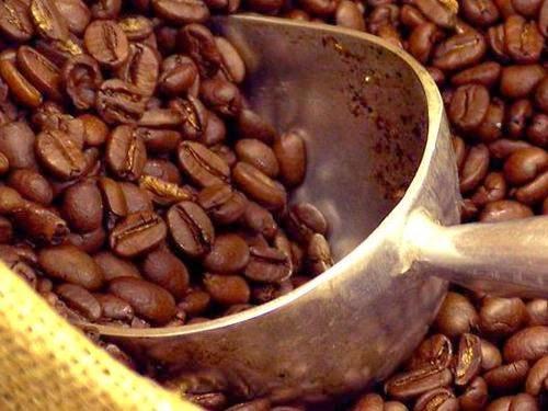 Quỹ phòng hộ giảm đặt cược giá cà phê tăng khi hạn hán Brazil lắng dịu