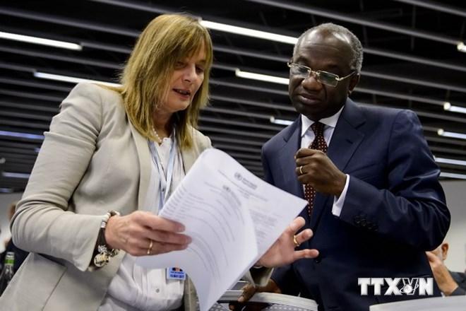 Bà Marie-Paule Kieny (trái), Trợ lý Tổng giám đốc WHO phụ trách về Cải tiến hệ thống y tế và Phó Tổng Giám đốc WHO Anarfi Asamoa-Baah trước cuộc họp. (Nguồn: AFP/TTXVN)