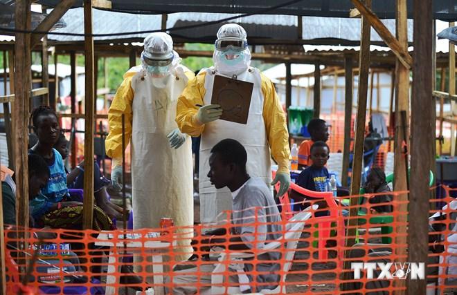 Nhân viên y tế Tổ chức Bác sĩ không biên giới điều trị cho các bệnh nhân nhiễm virus Ebola tại Kailahun, Sierra Leone. (Nguồn: AFP/TTXVN)