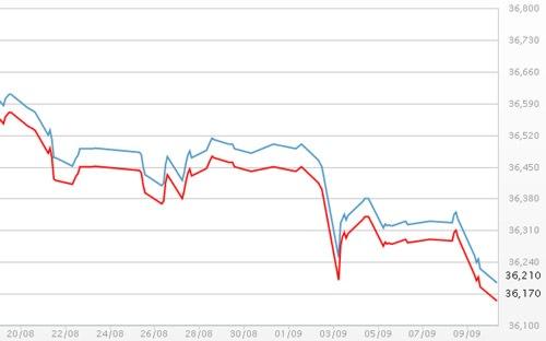 Diễn biến giá vàng SJC tại DOJI – Nguồn: DOJI.