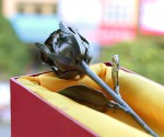Hoa hồng mạ vàng đen có giá 4 triệu đồng tại Việt Nam | Quà tặng phụ nữ 20/10