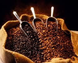 Giá Cà phê arabica, lúa mì, thịt lợn, vàng và dầu tháng 2/2014